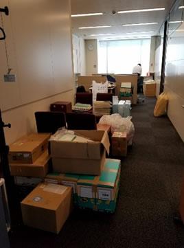 議員会館撤収ミッション。の中川郁子(ゆうこ)写真