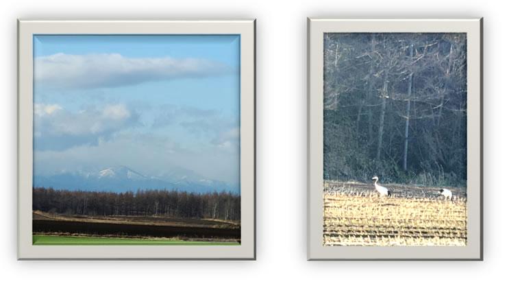 十勝の畑と山々の風景。冬の訪れ、丹頂鶴