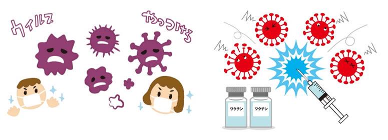 コロナウイルスイメージ写真