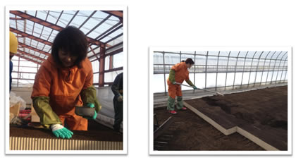 中川ゆうこの作業体験した十勝農業のいま