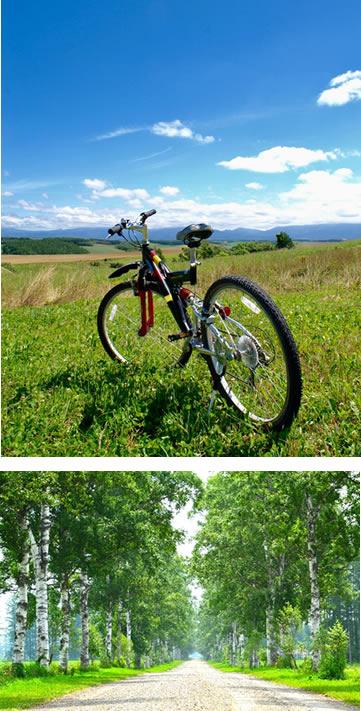 十勝のサイクリングイメージ