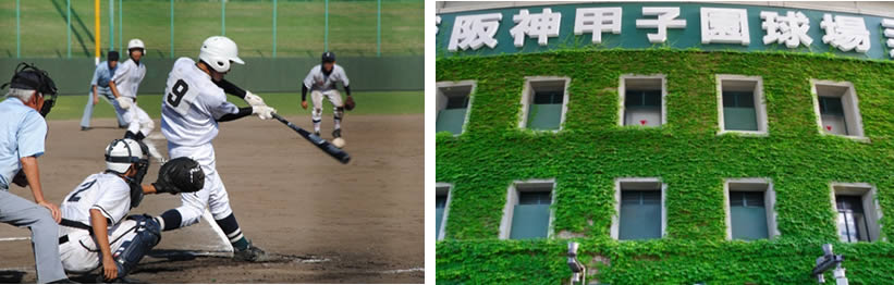 北北海道大会決勝の帯広農業高校と帯広大谷高校